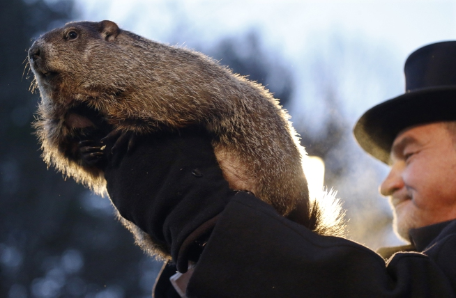 What Groundhog Day teaches us about making things up.