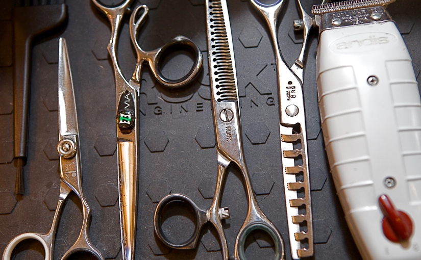 5 reasons you should be mentored by a hairdresser.