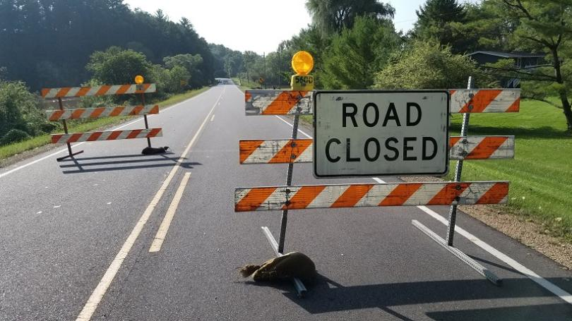 What do you do when you see a road closed ahead sign?