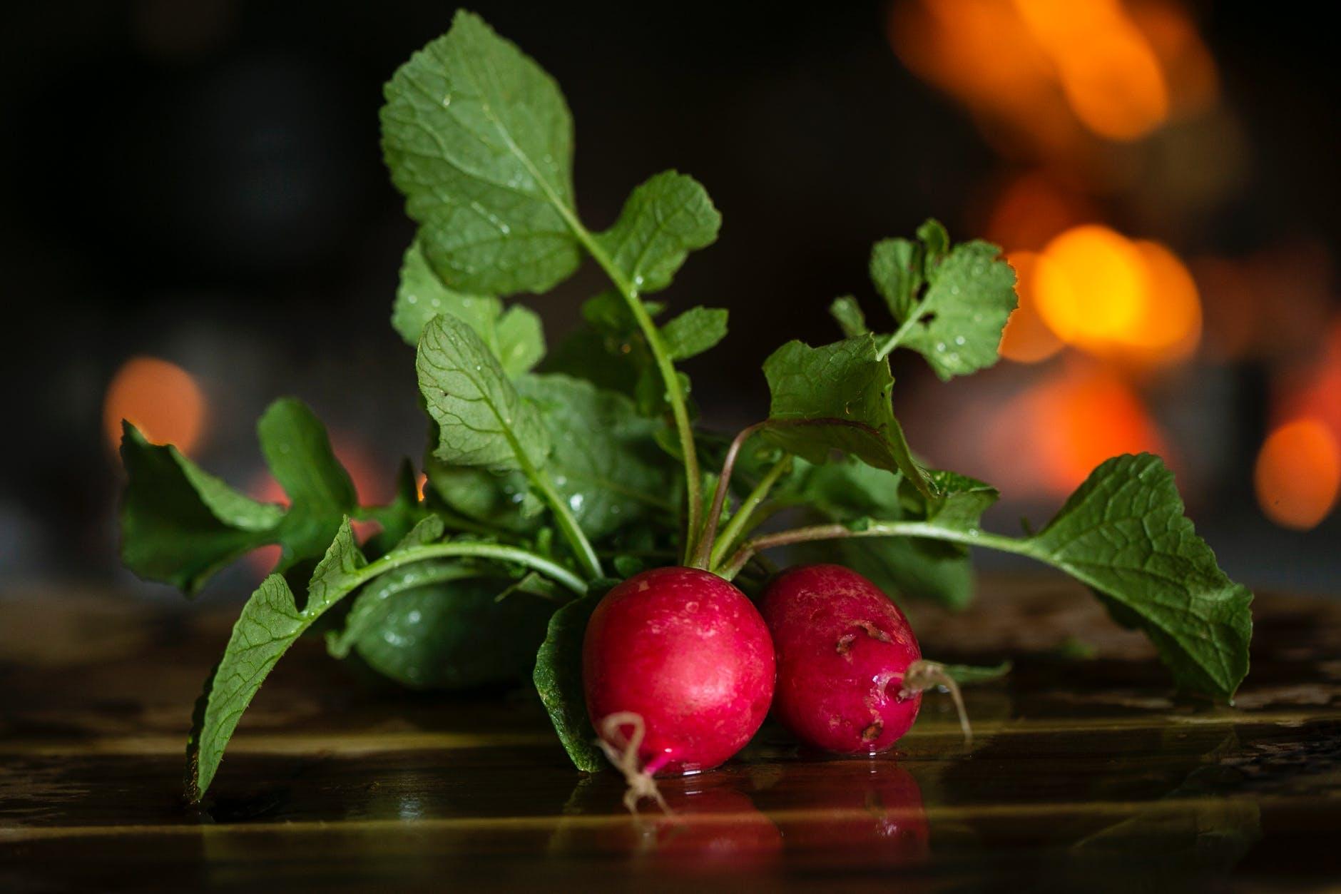close up photo of radishes