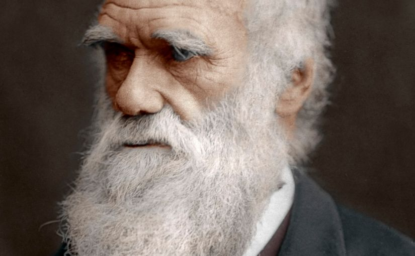 What we can learn about all this craziness from Charles Darwin.